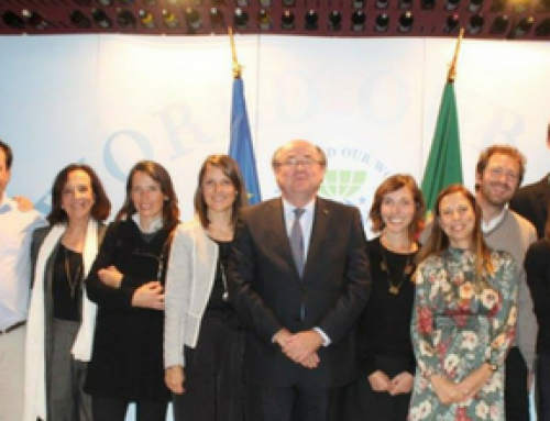 28th Anniversary of NSCentre of Council of Europe